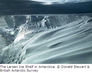 Larsen Ice Shelf in Antarctic Peninsula