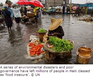 Food Insecurity in Haiti
