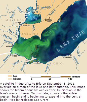 2011 Lake Erie Algae Bloom