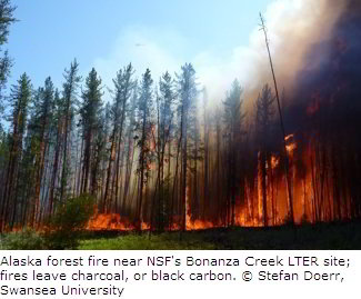 Wildfires in Alaska