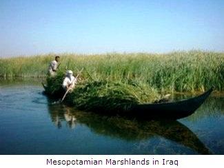 Iraq's Mesopotamian Marshlands