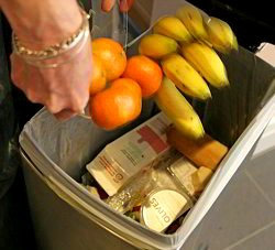 Food Loss & Waste