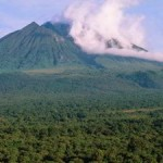 World Heritage Committee Requests Cancelation of Virunga Oil Permits