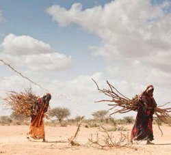 Drought and displacement in Africa due to climate change. © UNHCR/B. Bannon