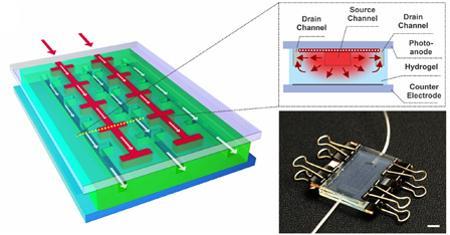 Regenerative Solar Cell
