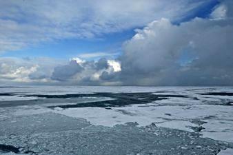 Arctic Sea Ice. © NOAA