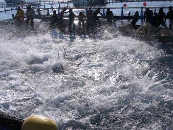 Net Pen Aquaculture