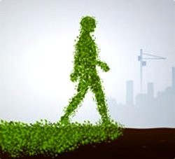 Sustainability Walking-theTalk