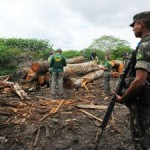 Brazil Begins Long-Awaited Operation to Save Earth's Most Threatened Tribe