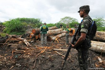 Eviction of Illegal Loggers in Brazil