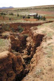 Land Degradation. © UN FAO