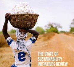 Smallholder Cotton Farmer. © SSI Review 2014