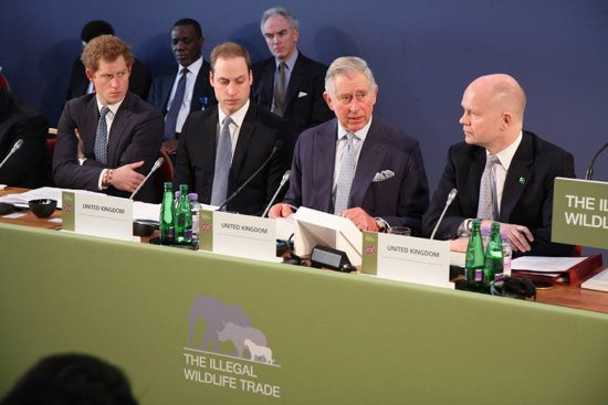 London Conference on Illegal Wildlife Trade 2014