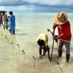 Climate Change Creates Pervasive Risks but Opportunities Exist for Effective Responses