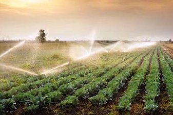 Water Use for Irrigation in Agriculture