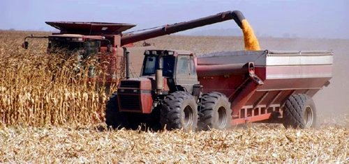 Corn Harvesting in U.S. © Ceres
