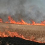 Study Shows Effects of Biomass Burning on Climate Change, Human Health