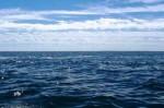 t2s-uw-atlantic-ocean