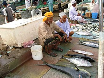 Fish Market in Oman