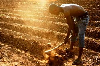 African Farmer. © Australian Dept. of Foreign Affairs / Flickr