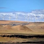 Identifying Economic Gains from Climate Action in United States