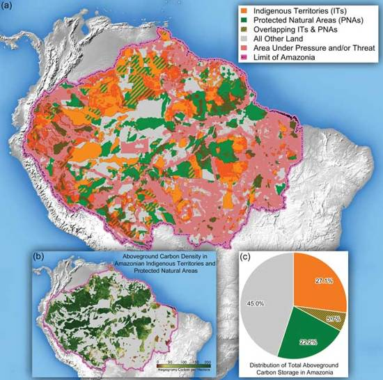 Indigenous Territories in Amazon